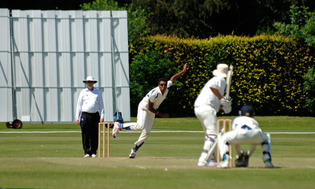 Cricket landscape
