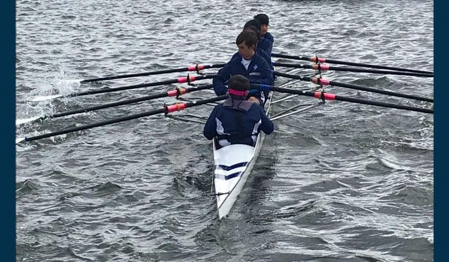 Shell Rowers